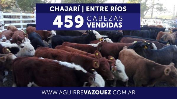 Resultados Chajarí / Entre Ríos – 08/09/2018