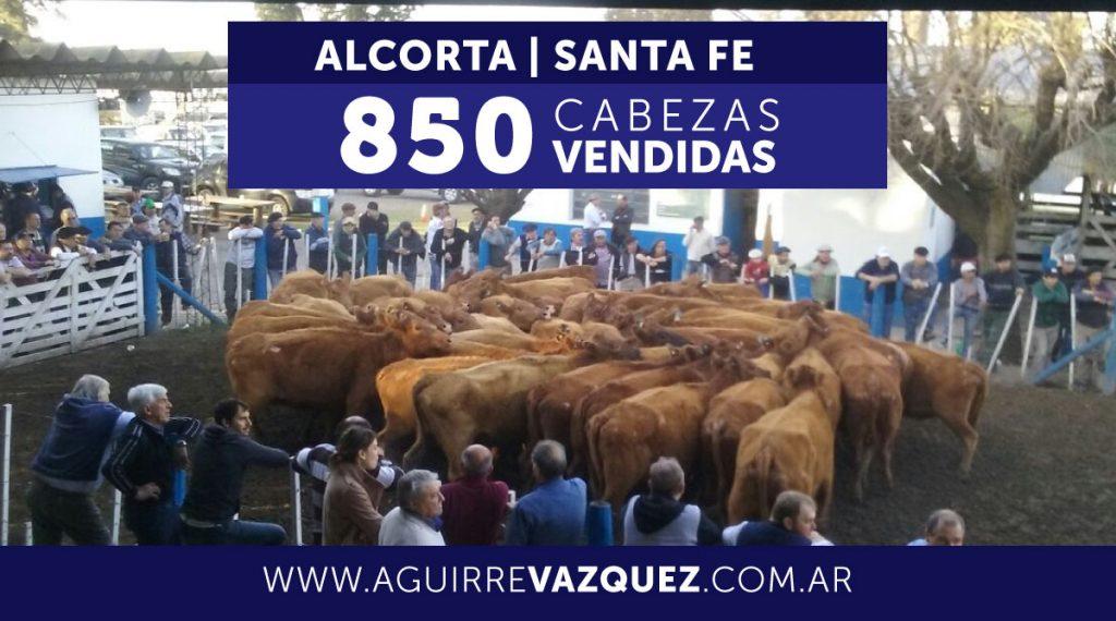 Resultados Alcorta/Santa Fe – 26/10/2018