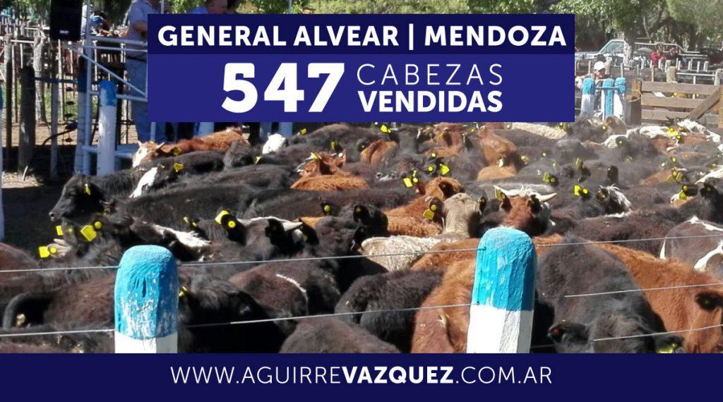 Resultados General Alvear/Mendoza – 16/11/2018