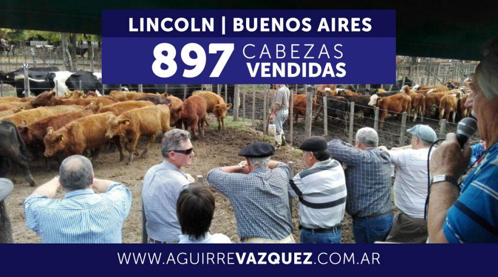 Resultados Lincoln/Buenos Aires – 21/11/2018