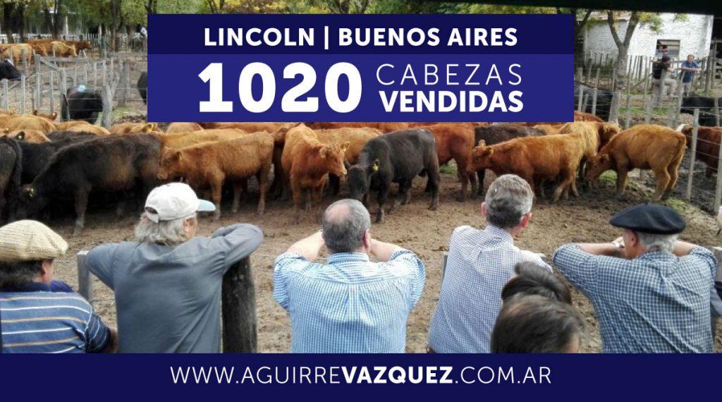 Resultados Lincoln/Buenos Aires – 19/12/2018