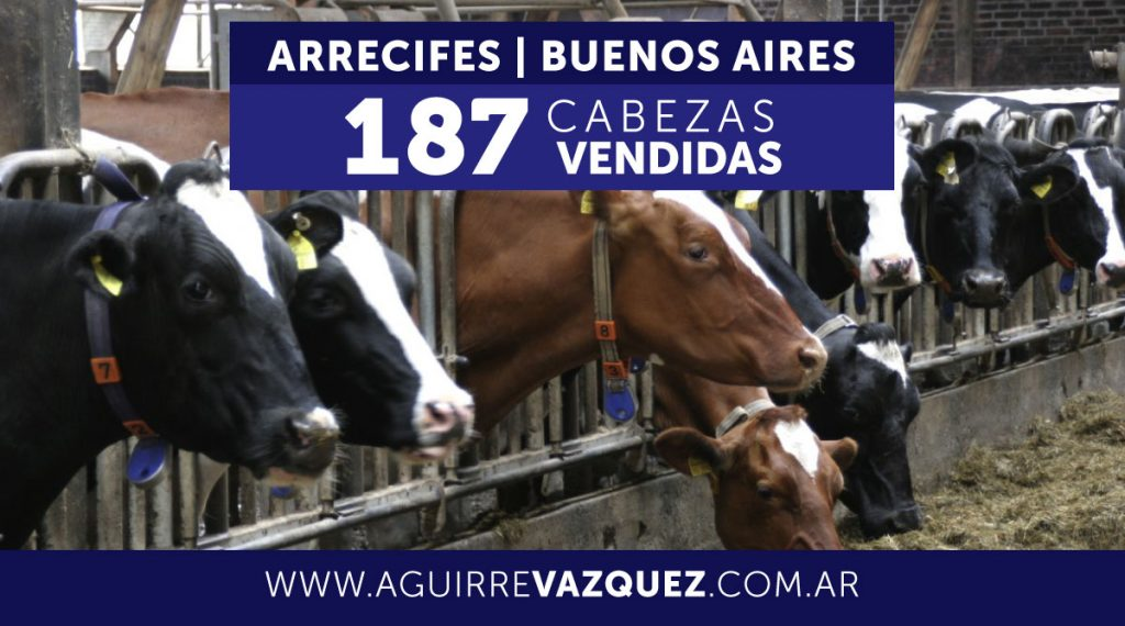Resultados Arrecifes/Buenos Aires – 09/01/2018