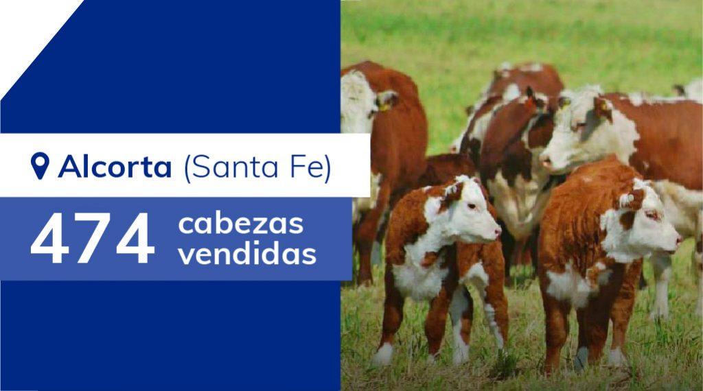 Resultados Alcorta (Santa Fe) – 21/06/2019