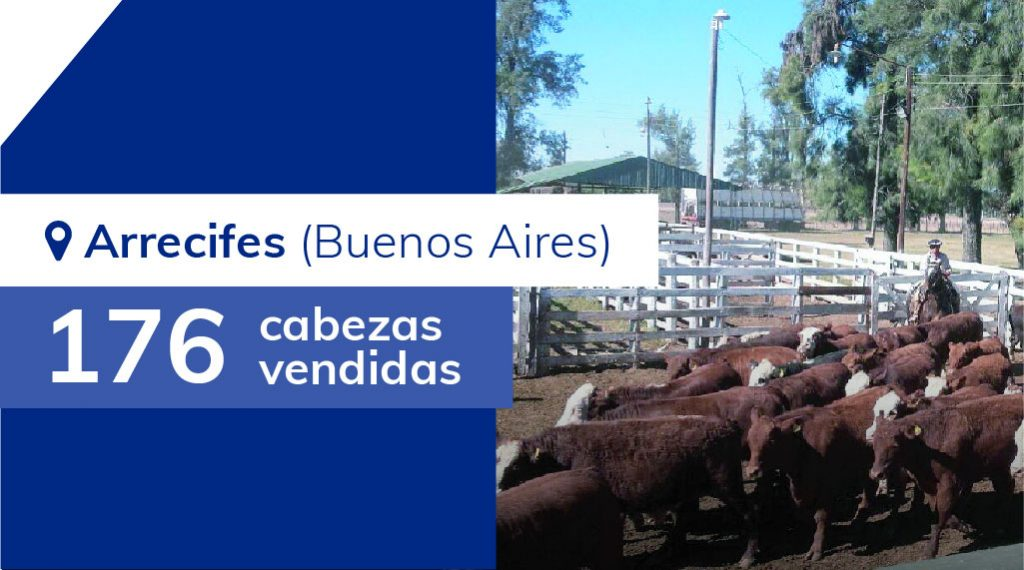 Resultados Arrecifes (Buenos Aires) – 28/06/2019