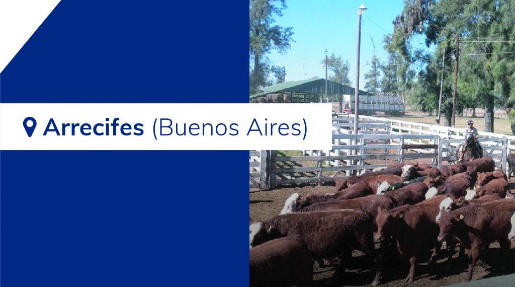 Resultados Arrecifes (Buenos Aires) – 31/07/2019