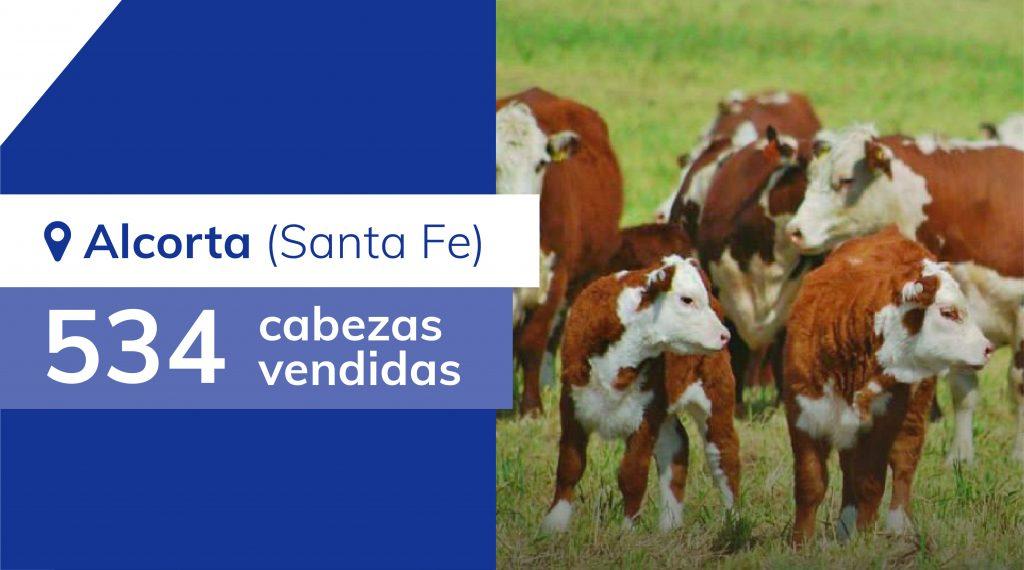Resultados Alcorta (Santa Fe) – 21/11/2019