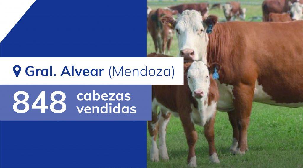 Resultados General Alvear (Mendoza) – 23/11/2019
