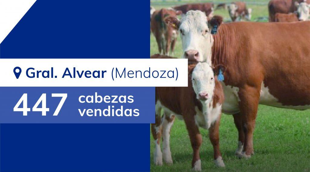 Resultados General Alvear (Mendoza) – 17/01/2020