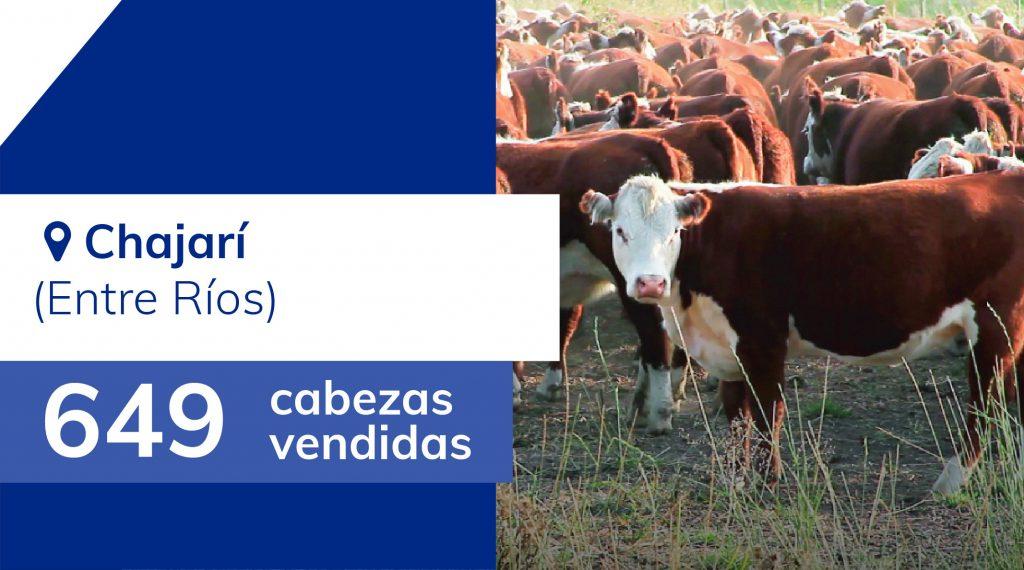 Resultados Chajarí (Entre Ríos) – 17/12/2019
