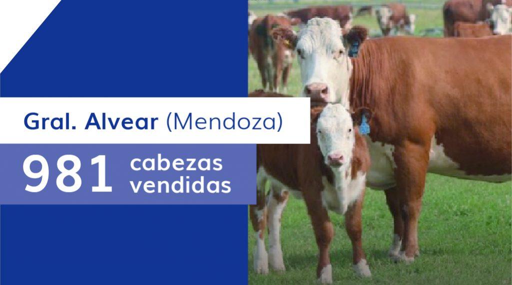 Resultados General Alvear (Mendoza) – 08/05/2020