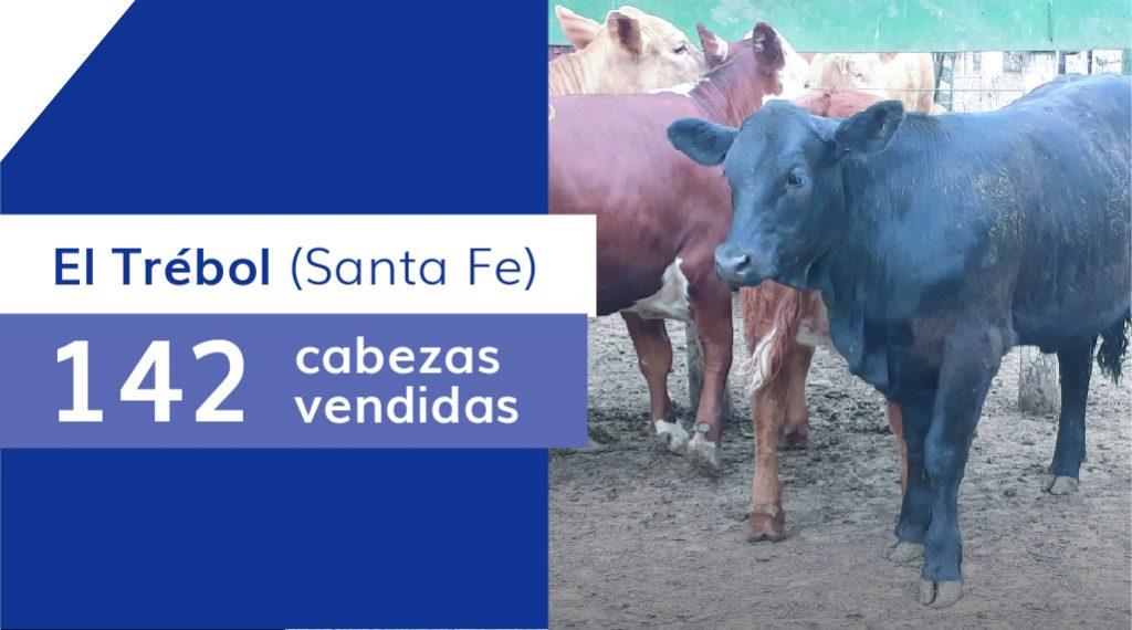 Resultados El Trébol (Santa Fe) – 18/05/2020
