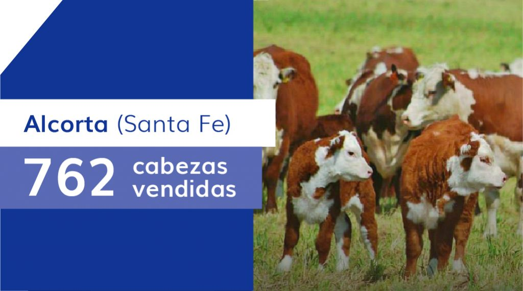 Resultados Alcorta (Santa Fe) – 23/07/2020